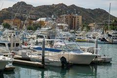 Cabo  San Lucas Marina Stock Image