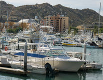 Cabo  San Lucas Marina Royalty Free Stock Image