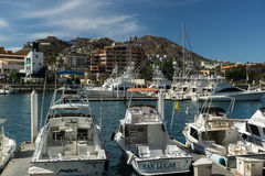 Cabo  San Lucas Marina Royalty Free Stock Photos