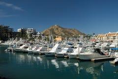Cabo  San Lucas Marina Stock Images
