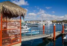 Cabo San Lucas Marina Royalty Free Stock Photo