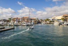 Cabo  San Lucas Marina Stock Photos