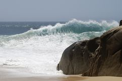 Cabo San Lucas Wave. Huge wave in movement on Lovers' beach in Cabo San Lucas, Mexico Stock Images