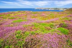 Cabo Sizun, Pointe du Raz. Bretaña, Francia Fotografía de archivo libre de regalías