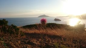 Cabo Sounion Imagem de Stock