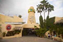 Cabo Wabo小酒吧在Cabo圣卢卡斯墨西哥 库存照片