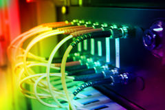 Cabos óticos da fibra conectados a um interruptor Fotografia de Stock