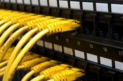 Cabos amarelos da rede foto de stock