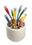 Cabos coloridos da rede que crescem em um Flower-pot Fotos de Stock Royalty Free