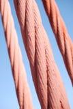 Cabos da ponte de porta dourada Fotografia de Stock