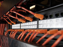 Cabos da rede Fotografia de Stock
