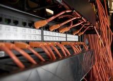 Cabos da rede Fotos de Stock