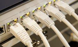 Cabos da rede conectados ao interruptor Fotos de Stock Royalty Free