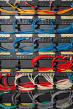 Cabos da rede da cor Foto de Stock