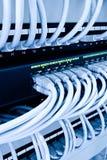 Cabos da rede no centro de dados Imagens de Stock