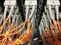 Cabos de fibra ótica com os conectores no grupo imagem de stock royalty free