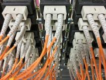 Cabos de fibra ótica com os conectores no grupo Foto de Stock Royalty Free