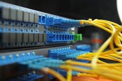 Cabos e cubo da rede Foto de Stock