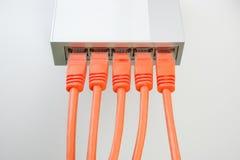 Cabos e interruptor de rede líquidos fotos de stock