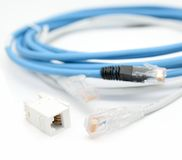 Cabos ethernet Imagens de Stock Royalty Free