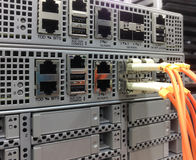 Cabos ethernet da telecomunicação conectados ao interruptor do Internet Fotografia de Stock