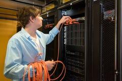 Cabos técnicos do remendo do gerente de Datacenter Imagem de Stock