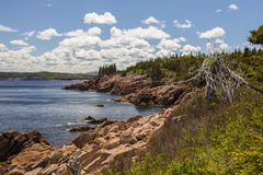 Cabot Trail. Along the Cabot Trail in Cape Breton Highlands National Park on Cape Breton Island Royalty Free Stock Image