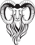 Cabra de montaña - mouflon con los cuernos curvados grandes Fotos de archivo