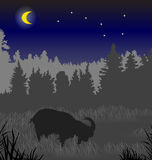 Cabra en un prado Imagen de archivo libre de regalías