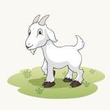 Cabra linda de la historieta en la hierba Imagenes de archivo