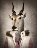 Cabra na roupa Ilustração de Digitas no estilo macio da pintura a óleo Foto de Stock