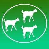 Cabra nacional Logo Background Banner del ganado stock de ilustración
