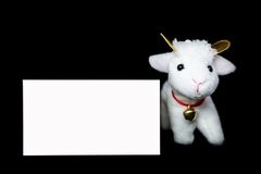 Cabra ou carneiros com cartão vazio Fotos de Stock