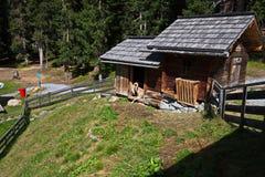 Cabra salvaje en Kappl Fotografía de archivo libre de regalías
