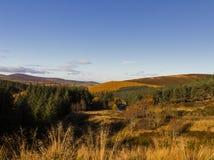 Cabrach väg till Dufftown. royaltyfri foto
