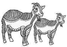 Cabras Imagenes de archivo