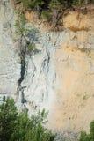 Cabras de montanha que lambem rochas salgados perto do parque nacional de geleira Fotografia de Stock Royalty Free