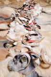 Cabras de nómadas en el pueblo de Korzok cerca del lago Tsomoriri, Ladakh, la India Fotografía de archivo