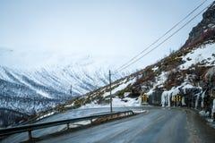 Cabras de Noruega Imagens de Stock Royalty Free