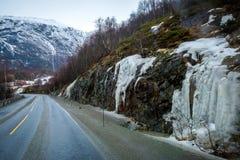 Cabras de Noruega Foto de Stock Royalty Free