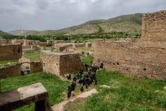 Cabras en pueblo abandonado en Dereiçi, Turquía Imágenes de archivo libres de regalías