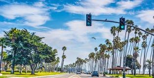 Cabrillo boulevard i Santa Barbara Arkivfoton