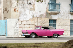 cabriohavana pink Royaltyfri Fotografi