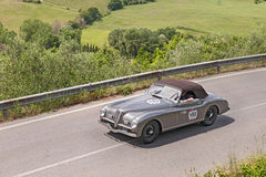 Cabriolet Pinin Farina (1947 d'Alfa Romeo 6C 2500 solides solubles Photographie stock