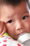 Cabrito con su botella de leche Foto de archivo libre de regalías