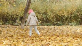 Cabrito feliz en parque del otoño juegan a la niña en un parque del otoño almacen de metraje de vídeo