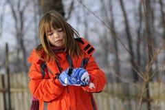 Cabrito que hace bolas de nieve Fotos de archivo libres de regalías
