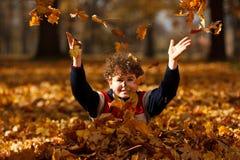 Cabrito que juega en parque del otoño Fotos de archivo libres de regalías