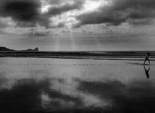 Cabrito que se ejecuta en la playa Fotos de archivo