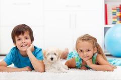 Cabritos con su animal doméstico Fotografía de archivo
